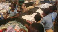 Attac-Togo sensibilise les enfants de Lomé aux déchets et à l'environnement.