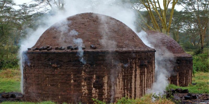 AFRIQUE CENTRALE : le projet Makala promeut le charbon de bois sans déforestation© Byelikova Oksana/Shutterstock