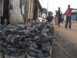 CENTRAL AFRICA: Makala Project promotes charcoal without deforestation © Vlad Karavaev /Shutterstock