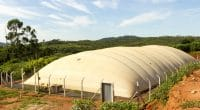 KENYA: AstraZeneca and CISL to supply biogas to local populations © Marco Paulo Bahia Diniz /Shutterstock