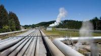 KENYA : un prêt de 49 M$ débloque le projet géothermique de Menengai mené par Quantum ©N.Minton/Shutterstock