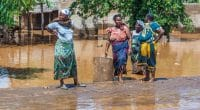 WEST AFRICA: Floods release resources for sanitation © Vadim Petrakov /Shutterstock