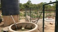 SÉNÉGAL : 130 M$ de la Banque mondiale pour l'eau et l'assainissement en milieu rural © BOULENGER Xavier/Shutterstock