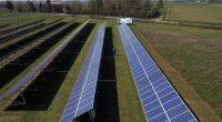 NAMIBIE : Cronimet va construire une centrale photovoltaïque pour Chobe Water Villas ©Massimo Dallaglio /Shutterstock