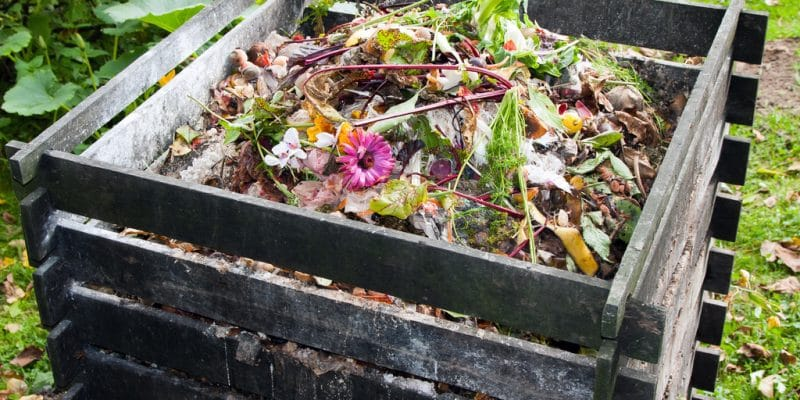 SOUTH AFRICA: Organic Matters turns restaurant waste into compost ©Evan Lorne/Shutterstock
