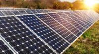 CAMEROUN : du solaire pour éclairer l'aéroport international de Douala ©Diyana Dimitrova /Shutterstock