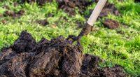 BENIN: PlanFutur produces soil fertilisers with human excrement ©Alicja Neumiler /shutterstock