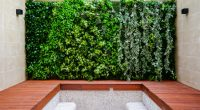 "NIGERIA: ""Green walls"" to overcome the heat in cities? ©August/Shutterstock"