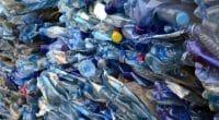 KENYA: Francis Muriithi earns money by recycling plastic waste © Bogdan Ionescu /Shutterstock