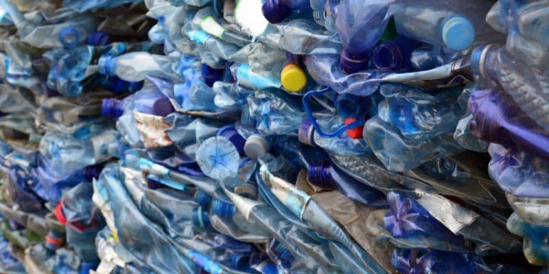 KENYA : Francis Muriithi gagne de l'argent en recyclant les déchets plastiques © Bogdan Ionescu /Shutterstock