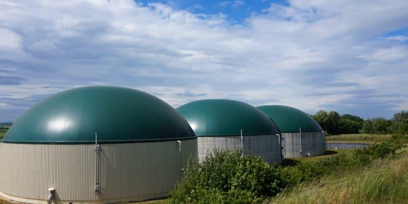 IVORY COAST: USTDA will build a biomass power plant in Divo © winyuu /Shutterstock