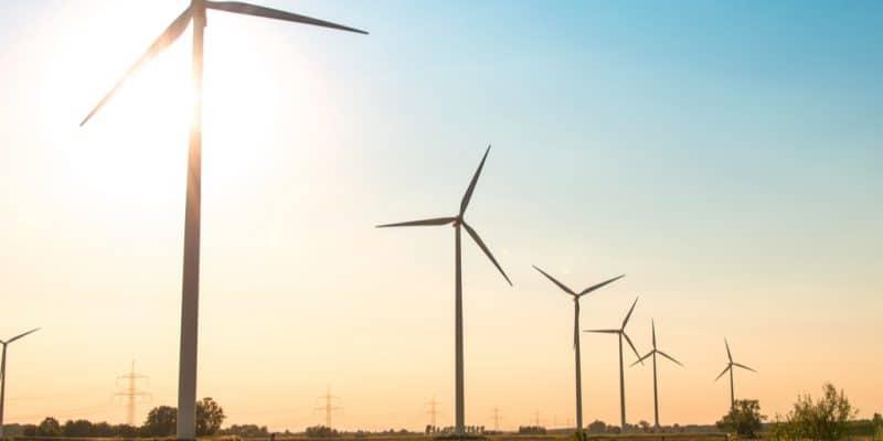 MAROC : Soluna va construire un parc éolien pour une mine de cryptomonnaie à Dakhla ©Elnur/Shutterstock