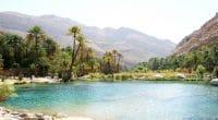 ALGÉRIE : 16 communes vont recevoir l'eau transférée de la nappe de Chott el Gharbi©Anna K Mueller/Shutterstock