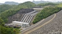 OUGANDA : le chinois Sinohydro va livrer le barrage hydroélectrique de Karuma en 2019©Jen Watson/Shutterstock