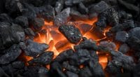 TUNISIA: Chanouf produces bio coal from waste ©J. Helgason/Shutterstock