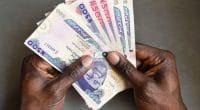 TANZANIE : Zola Zlectric, décroche 35 millions de dollars pour financer ses projets© Red Confidential/Shutterstock