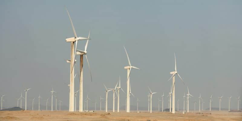 EGYPT: ACWA Power wins concessions for 500 MW of wind power ©Nebojsa Markovic /Shutterstock