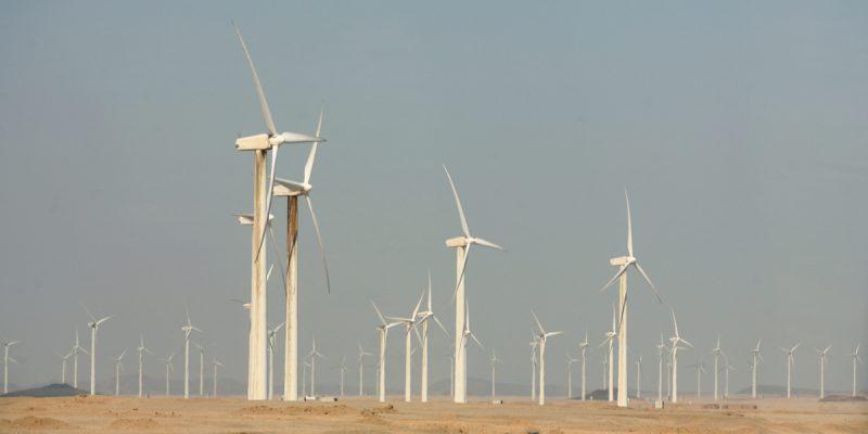 ÉGYPTE : Acwa Power obtient des concessions pour 500 MW d'énergie éolienne ©Nebojsa Markovic /Shutterstock
