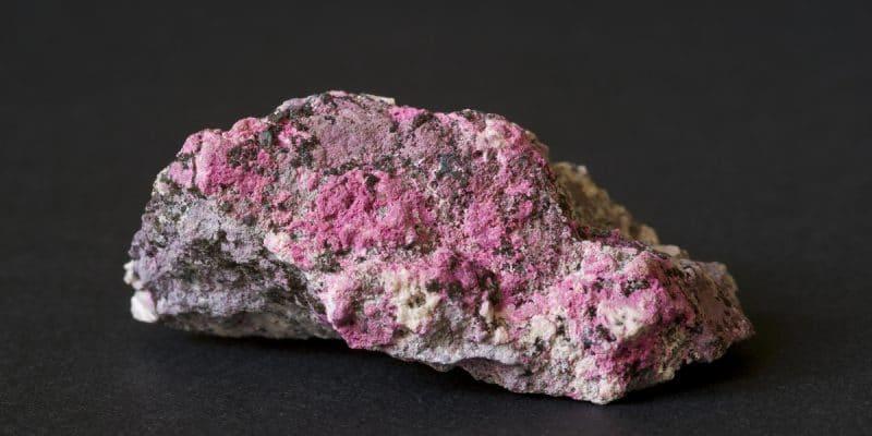 CONGO: Extraction of cobalt, stumbling block for green energies © MarcelClemens /Shutterstock