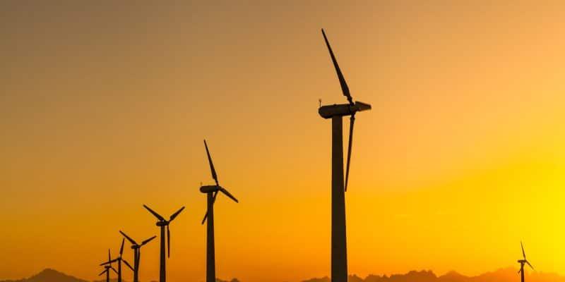 SÉNÉGAL : Les travaux de construction du premier parc éolien sont imminents©Anton Petrus/Shutterstock