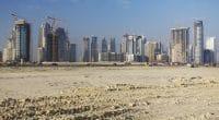 EGYPT: Smart city to replace current capital, Cairo ©Jen Watson/Shutterstock