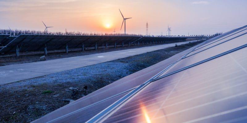 AFRICA: Three actors in energy sector awarded by EDF ©Jen Watson/Shutterstock