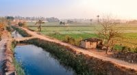 ÉGYPTE : Le Caire signe un accord avec l'UE pour une meilleure gestion de l'eau ©Kazzazm/Shutterstock
