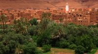 KENYA: NEPAD, African Union agency, rolls out red carpet to Morocco© Marcel Baumgartner/Shutterstock