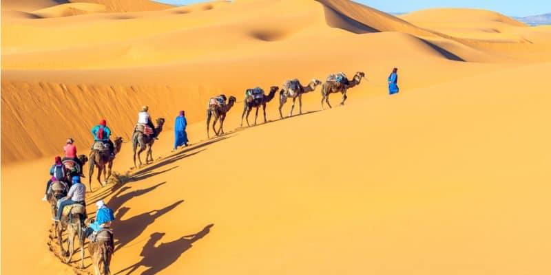 SAHARA : des parcs éoliens et solaires pour augmenter le niveau des précipitations? ©Vixit/Shutterstock