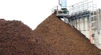 BÉNIN : à Houegbo, ReBin remplace le charbon de bois par du biogaz©Holger Kirk/Shutterstock