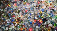 Afrique : très rentable, le crime environnemental attaque les économies africaines© Somphop Nithi/Shutterstock