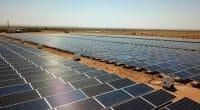 AFRIQUE : six pays s'unissent pour faciliter leurs levées de fonds dans le solaire© Sebastian Noethlichs/Shutterstock