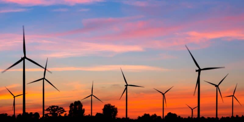 SÉNÉGAL : le danois Vestas va équiper le parc éolien de Taiba N'Diaye de 159 MW©Casper1774 Studio/Shutterstock
