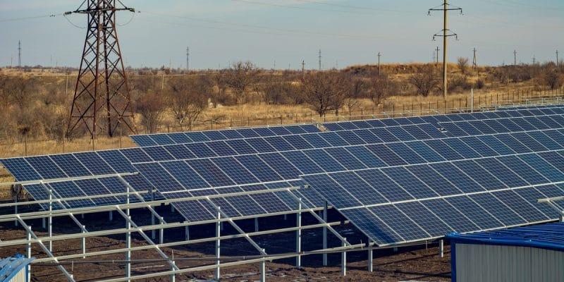 MOZAMBIQUE : vers un nouveau parc solaire de 100 MW au nord-est du pays© Romeo Rum /Shutterstock