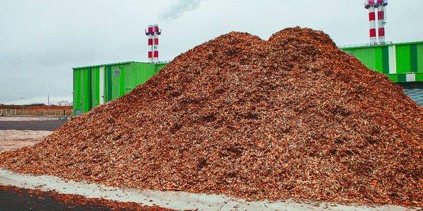 COTE D'IVOIRE : Proparco finance le projet de centrale à biomasse (46 MW) d'Ayebo©edf
