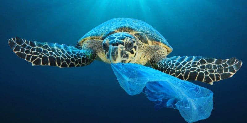 AFRIQUE : l'initiative « Clean Oceans », bénéficiera aux zones côtières du continent© Rich Carey/Shutterstock