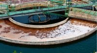 EGYPT: Wastewater treatment plants to irrigate plantations in Sinai© Foto Bug11/Shutterstock