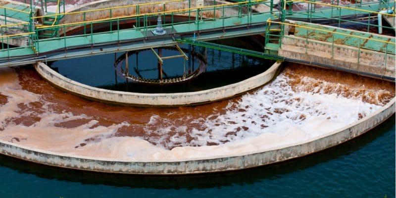 ÉGYPTE : des stations d'épuration pour irriguer les plantations situées dans le Sinaï© Foto Bug11/Shutterstock