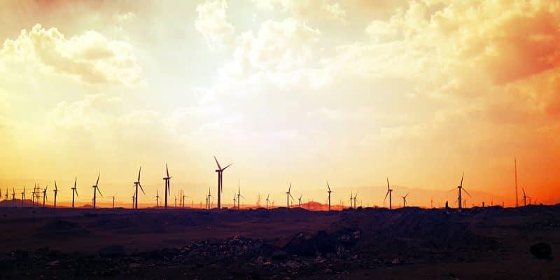 ÉGYPTE : le potentiel de production d'énergies renouvelables dépasse les prévisions© Ayman Elnady/Shutterstock
