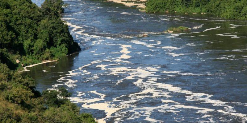 ÉGYPTE : la BEI injecte 214 M€ pour l'assainissement dans le delta du Nil©Sam DCruz/Shutterstock