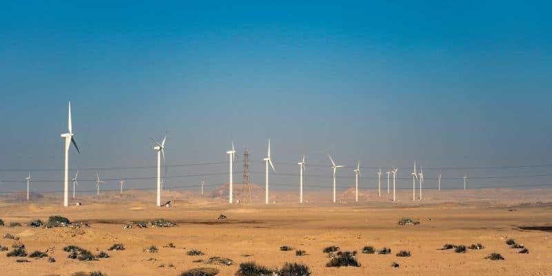 AFRIQUE : EDF et Gibb créent une joint-venture spécialisée sur l'énergie renouvelable© Octofocus2 /Shutterstock