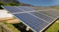 NIGERIA : MBSO a lancé un appel d'offres pour un projet de parc solaire de 100 MW ©Jen Watson/Shutterstock