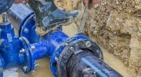 ALGERIA: Suez to manage water, sanitation in Algiers and Tipasa for another 3 years©Serato/Shutterstock