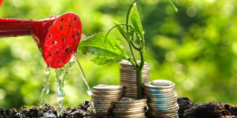 AFRIQUE : la BAD peaufine un nouvel instrument incitatif pour financer les ENR©Nattapol Sritongcom/Shutterstock