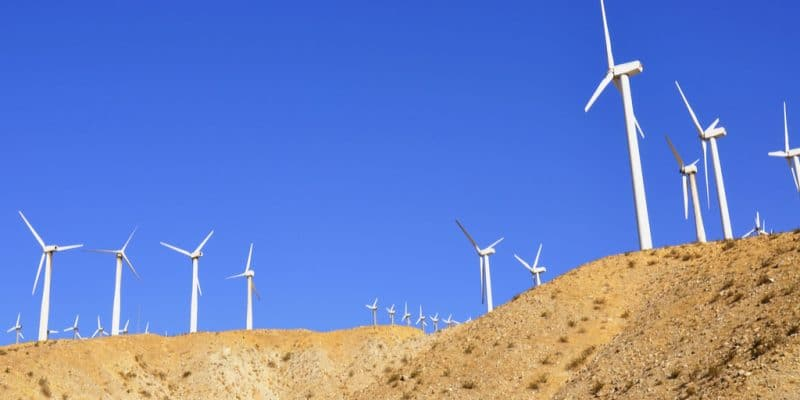 ÉGYPTE : Engie, Orascom et Toyota vont fournir 250 MW d'énergie éolienne d'ici 2020©/Shutterstock