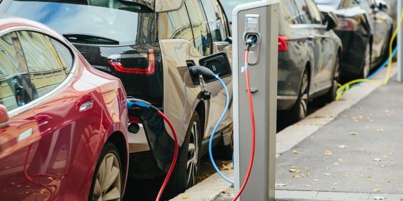ÉGYPTE : Darshal investit 53 M$ pour développer le marché des voitures électriques ©Scharfsinn/Shutterstock