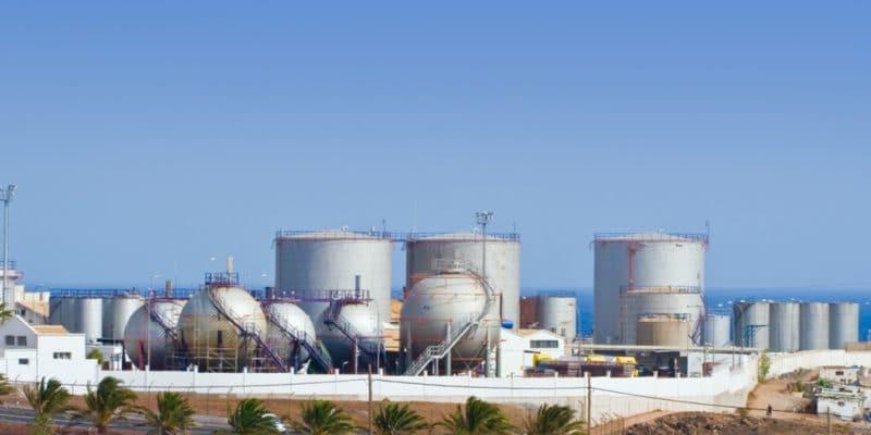 ALGÉRIE : ADE va construire une station de dessalement d'eau de mer à Tighremt©Irabel8/Shutterstock