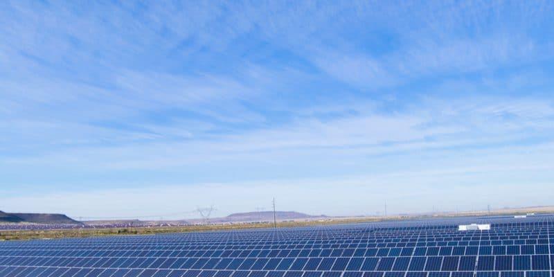ZIMBABWE : Soventix va fournir 22 MW à partir du parc solaire d'Harava© Douw de Jager/Shutterstock