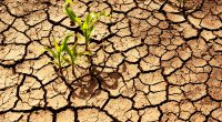 SOUTHERN AFRICA: Germany invests €10 million in climate research© Meryll/Shutterstock