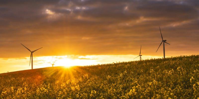 AFRIQUE : 44 Mds € de l'UE pour les énergies renouvelables en Afrique subsaharienne© LieselK /Shutterstock